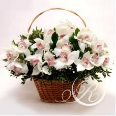 Букет орхидей в корзине