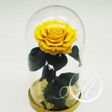 Роза ⌀10 в колбе желтая