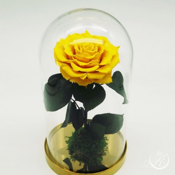 Роза в колбе желтая ⌀10 Maxi