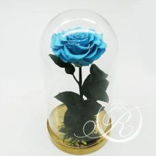 Роза ⌀10 в колбе голубая