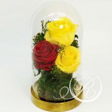 Три розы в колбе разноцветные