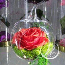 Бутон розовый в колбе Яблоко