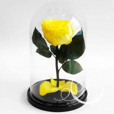 Роза ⌀8 желтая в колбе
