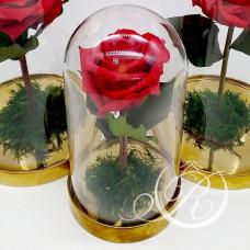Роза ⌀6 в колбе красная