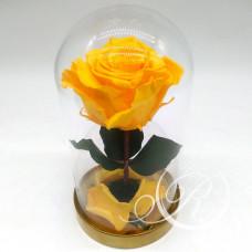 Роза ⌀6 в колбе желтая