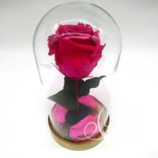 Роза ⌀6 в колбе малиновая