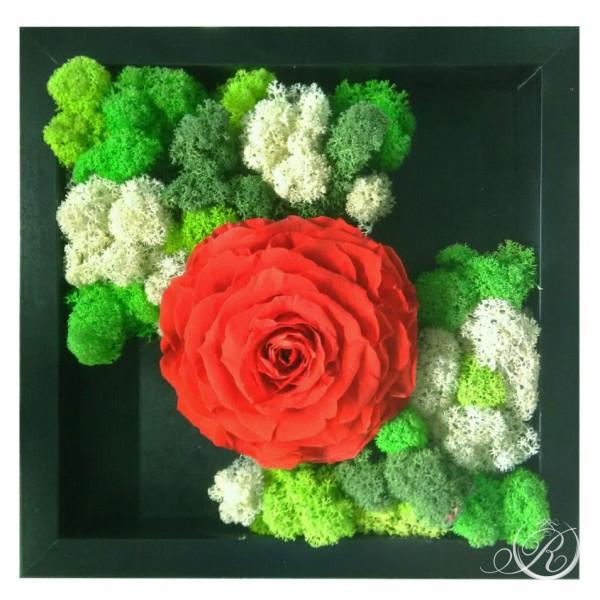 Картина из цветов #6