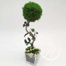 Дерево в стиле Бонсай #12