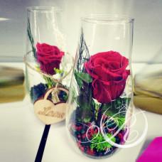 Роза красная в бокале